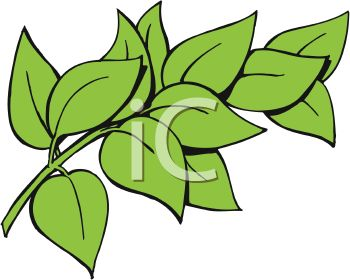 350x280 Picture Of Green Leaves On A Stem In A Vector Clip Art