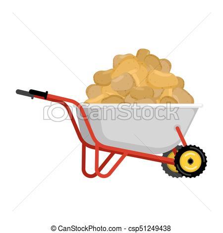 450x470 Wheelbarrow And Potato. Vegetables In Garden Trolley. Big