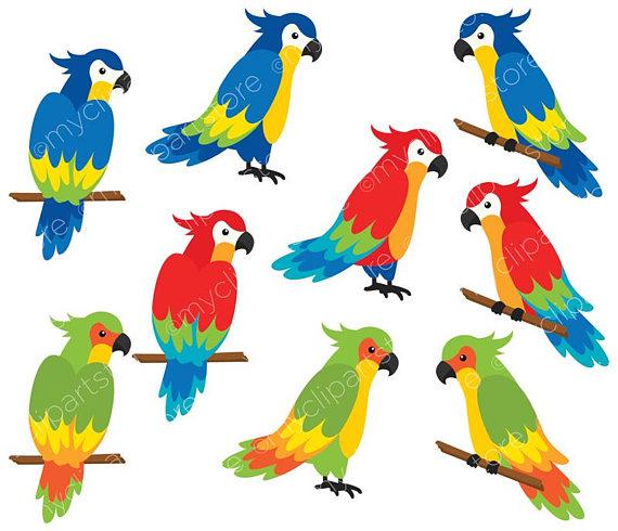570x490 Clipart Tropical Birds Google Images Clip Art Free Of Fish