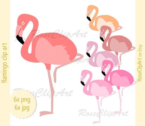 Tropical Bird Clipart