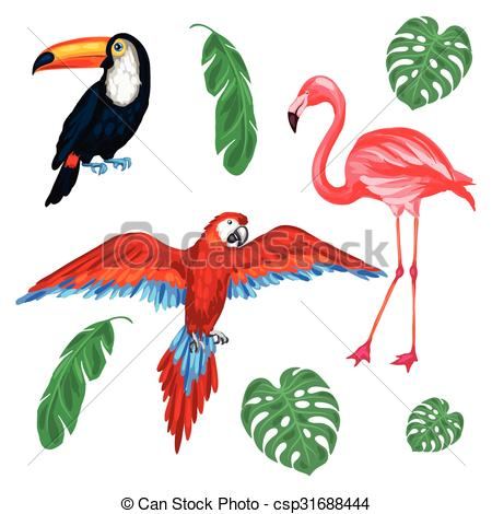450x470 Set Of Tropical Birds And Palm Leaves. Eps Vector