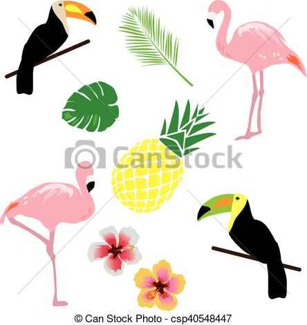 444x470 Vector Tropical Background With Birds, Flowers Eps Vector