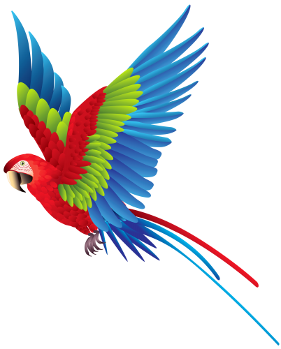 402x500 Colourful Parrot Png Clipart Best Web Clipart {Saved