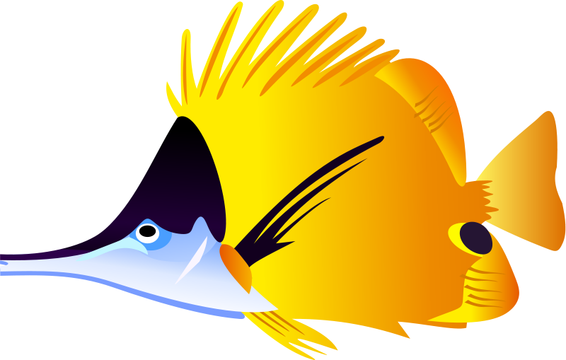 800x509 Tropical Fish Clipart Clipart Panda