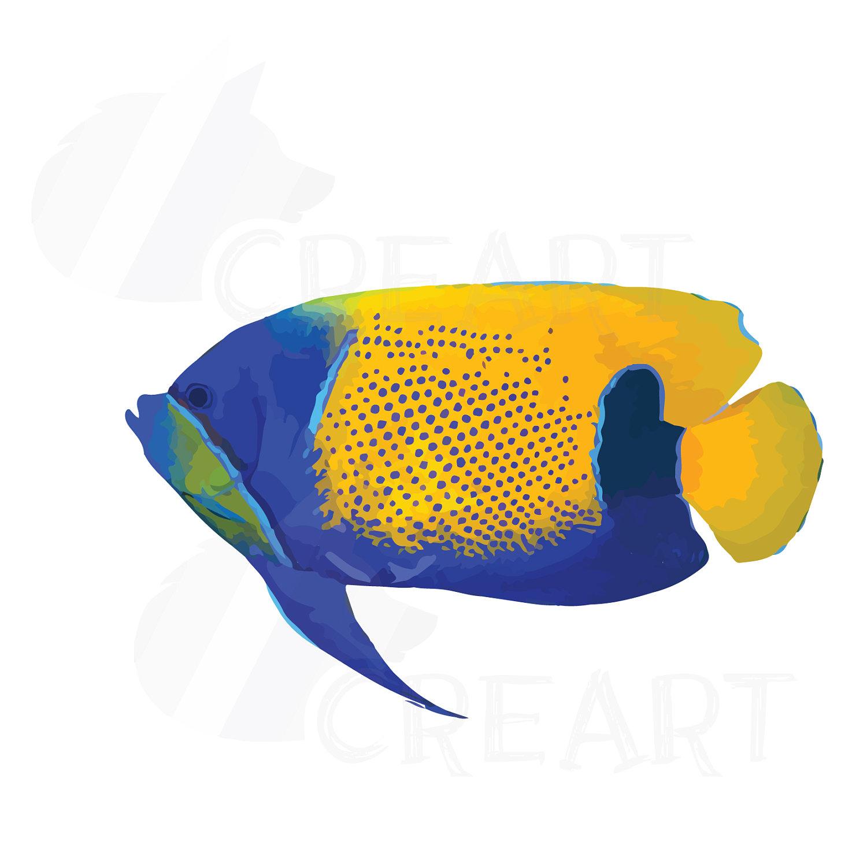 1500x1500 Watecolor Tropical Fish Clip Art, 12 Tropical Fish Vectors