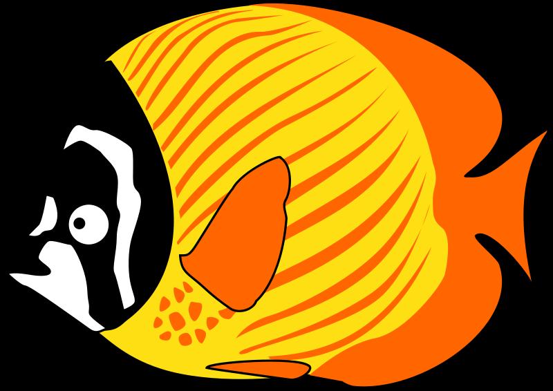 800x566 Cartoon Fish Clip Art