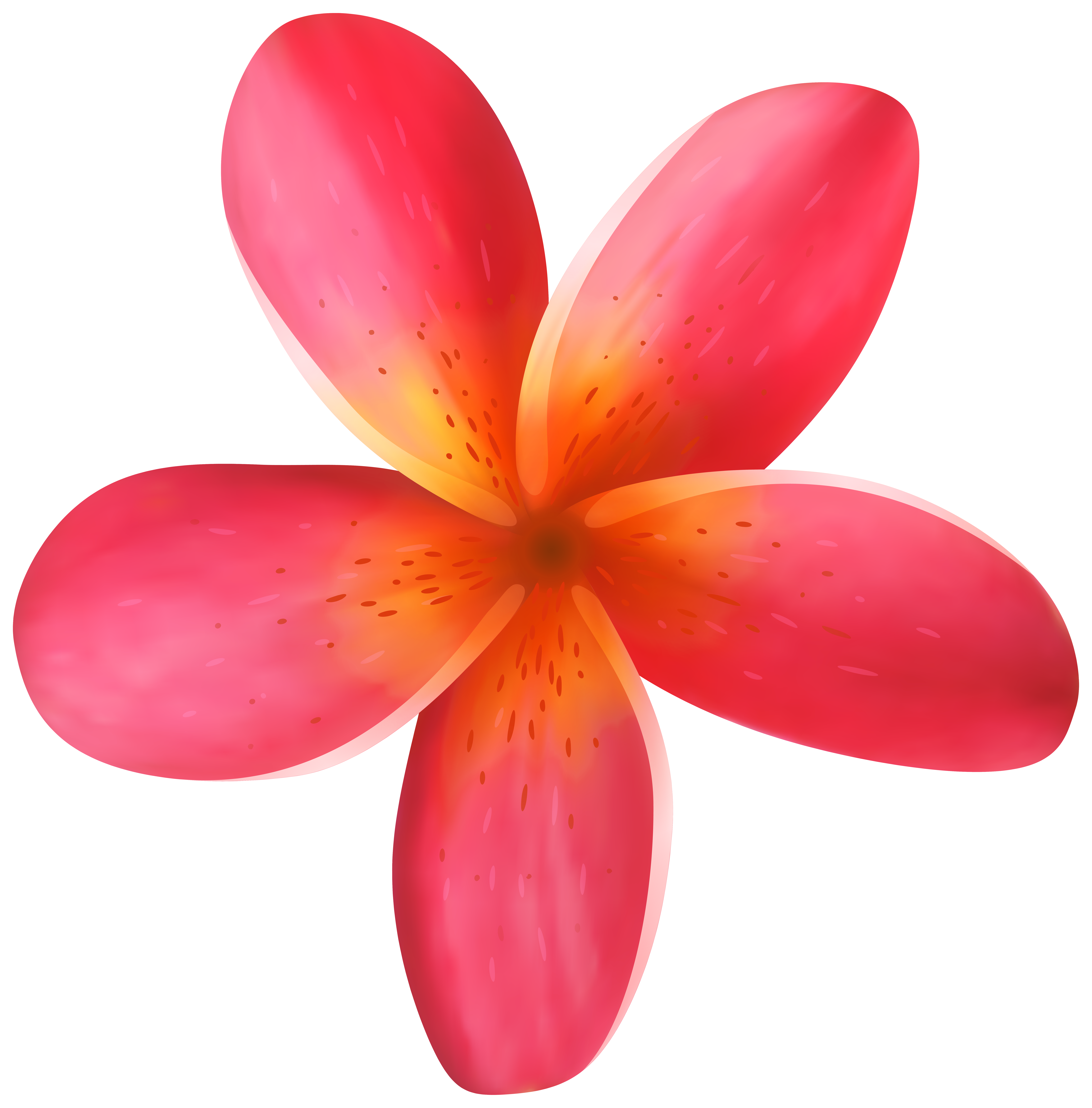 7884x8000 Tropical Flower Png Clip Art Imageu200b Gallery Yopriceville