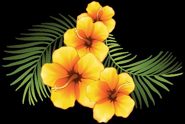 600x402 Exotic Floral Decoration Transparent Png Clip Art Image Kwiaty