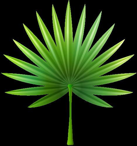 469x500 Exotic Leaf Png Clip Art Clip Art Clip Art, Exotic
