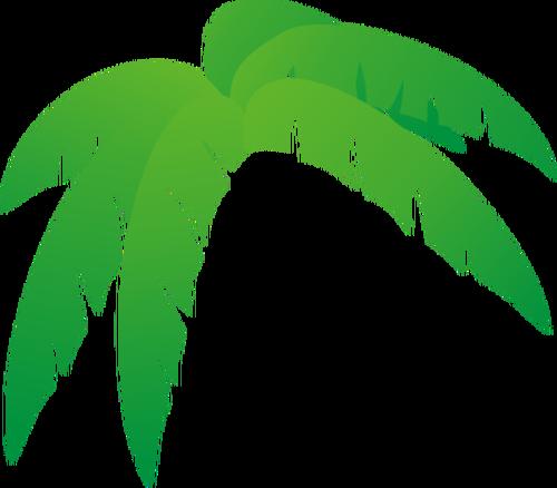 500x438 Gallery Palm Tree Leaf Clip Art,