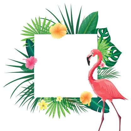 416x416 Vector Background With Tropical Leaves, Flowers And A Flamingo