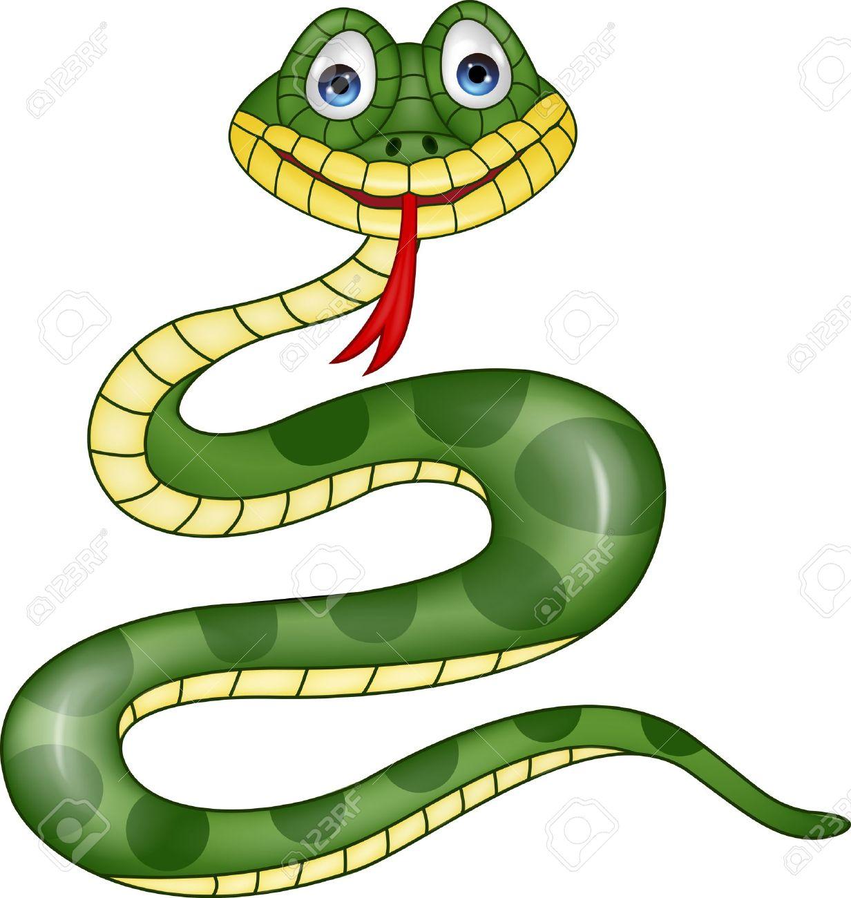 1232x1300 Exotic Clipart Rainforest Snake