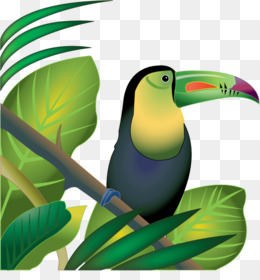 260x280 Amazon Rainforest Black And White Clipart