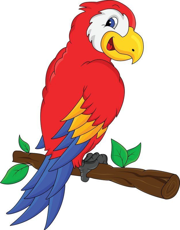 626x800 Clipart Jungle Birds Exotic From Rain Forest Collection