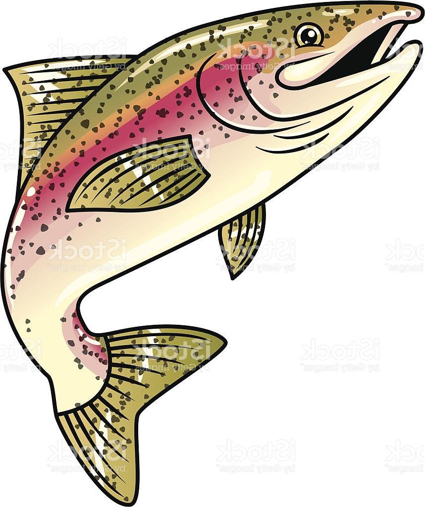 858x1024 Rainbow Trout Clipart Free Download Clip Art