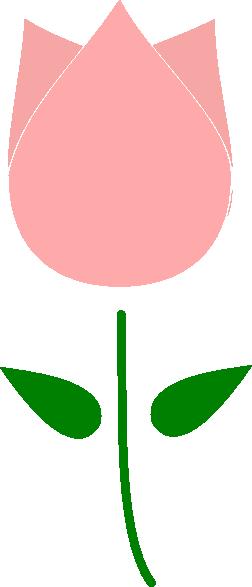 252x587 Pink Tulip Clip Art
