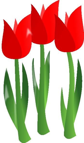 348x592 Red Tulip Clip Art Clipart