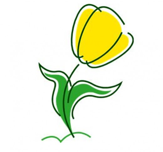520x487 Yellow Tulip Clip Art Clipart Panda