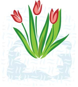 315x350 Free Tulip Flower 2 Clipart And Vector Graphics