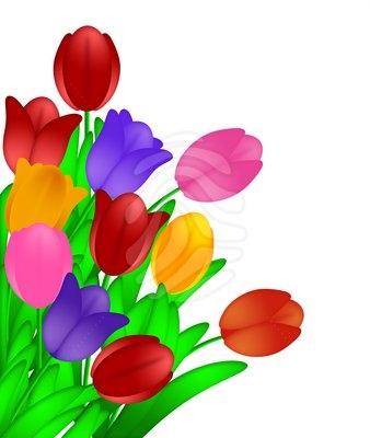 338x400 Tulip Flower Clipart Tulip Flower Clip Art Free Clipart Panda Free