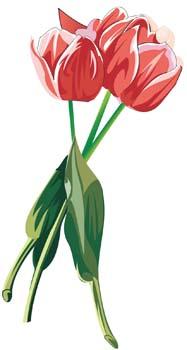 187x350 Flowers Roses Clip Art Free Vector 4vector