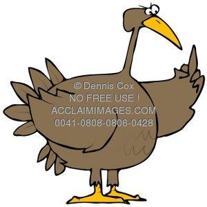 300x300 Clipart Illustration Turkey Bird