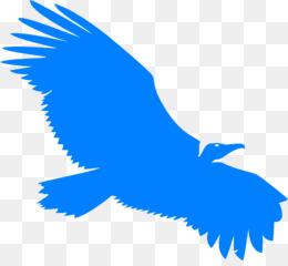 260x240 Free Download Turkey Vulture Beaky Buzzard Silhouette Clip Art