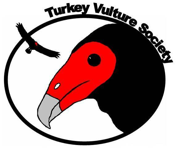 580x483 Turkey Vulture Society Informing About The Valuable