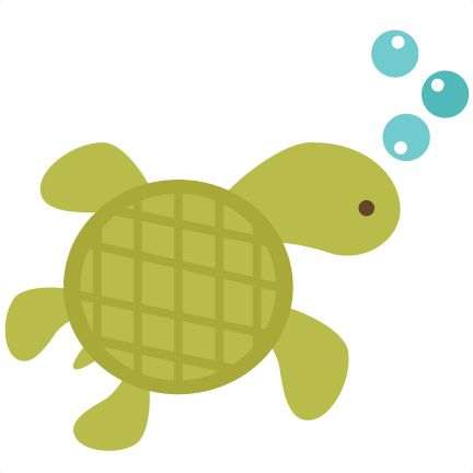 432x432 Collection Of Turtle Clipart Background High Quality, Free