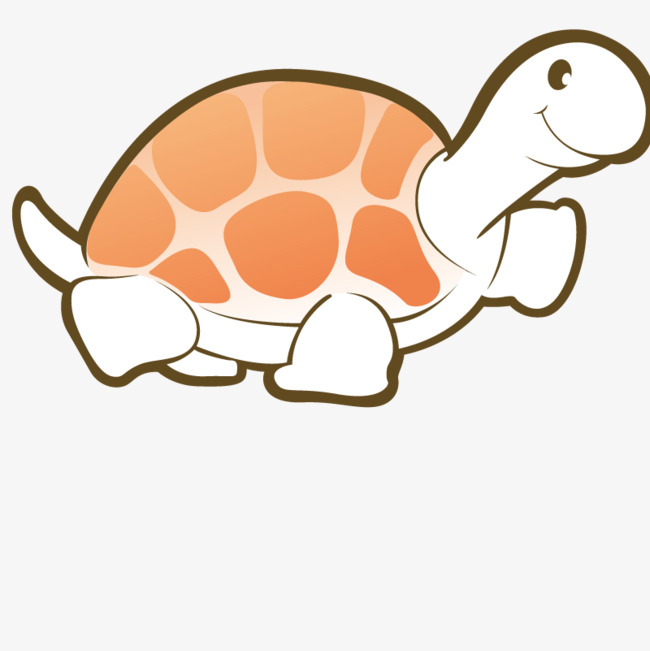 650x651 Animals Turtle, Tortoise, Shape, Art Png Image And Clipart