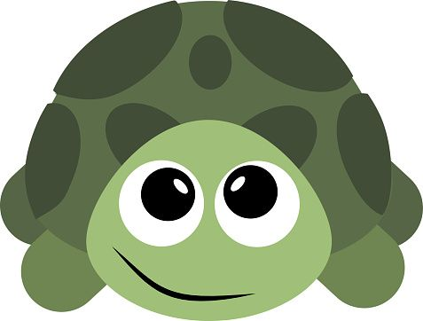 Turtle Clipart
