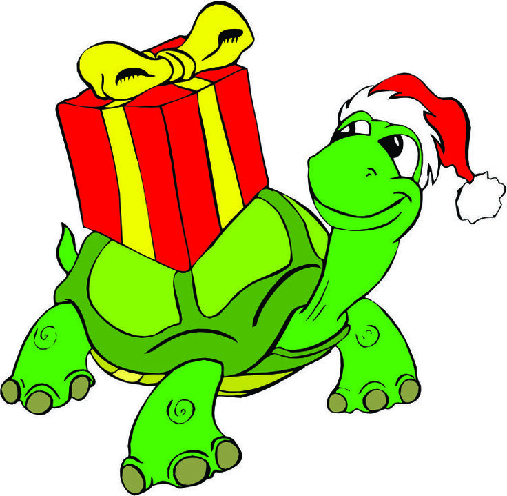 736x719 Collection Of Christmas Turtle Clipart High Quality, Free