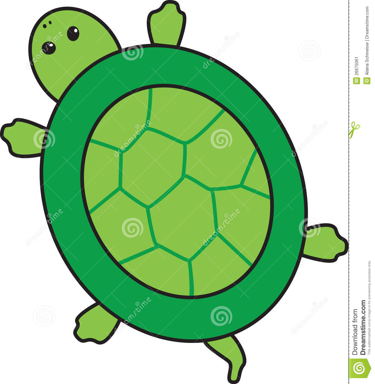1270x1300 Turtle Shell Clip Art Free Collection Download And Share Turtle