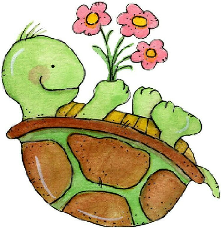 736x762 Turtle In Flowers Clipart
