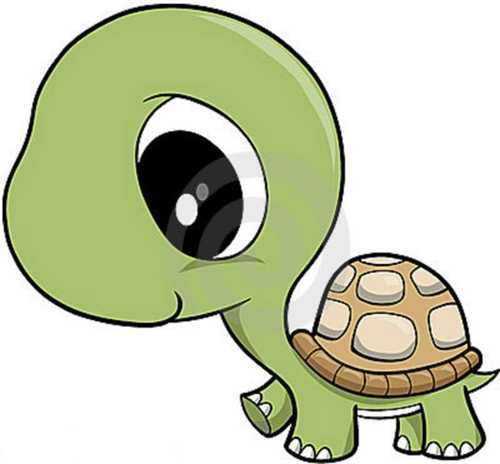 500x464 Baby Turtle Clipart