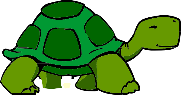 600x317 Green Turtle Clip Art