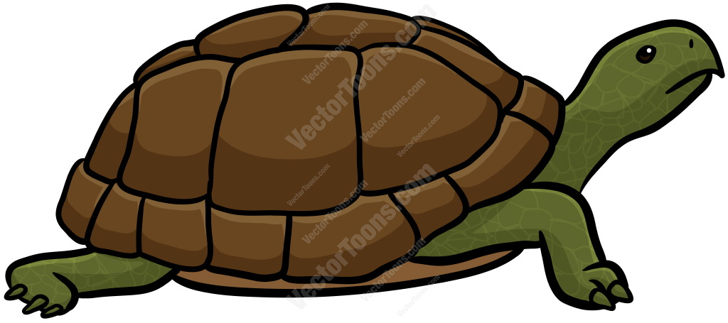 1024x455 Green Turtle With Brown Shell Cartoon Clipart Vector Toons