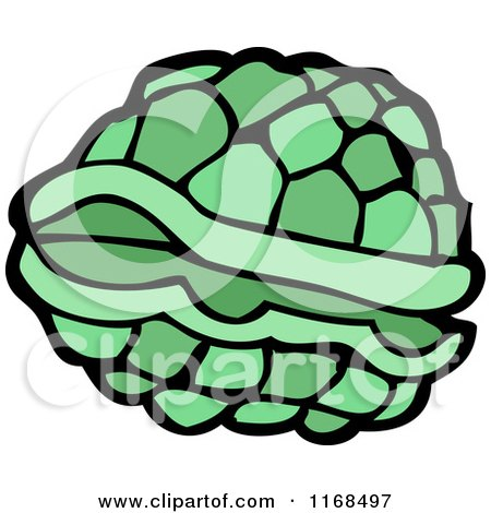 450x470 Royalty Free (Rf) Turtle Shell Clipart, Illustrations, Vector