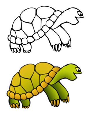 317x400 Turtle Shell Clip Art