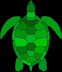 261x300 Turtle Shell Clipart Turtle Clip Art