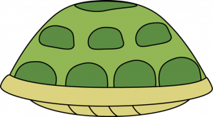 Turtle Shell Clipart At Getdrawings Com Free For Personal Use