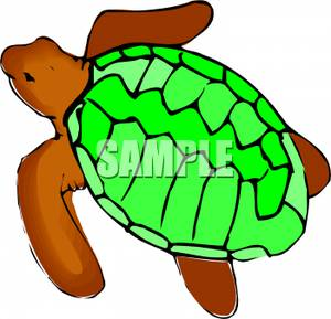 300x289 Clipart Image A Brown Turtle With A Green Shell