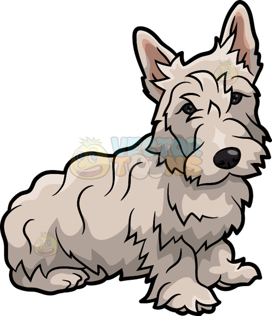 883x1024 A Frail Scottish Terrier Dog Cartoon Clipart Vector Toons