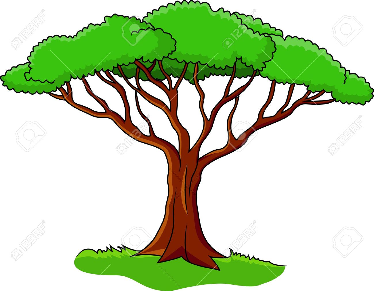 1300x1011 Ultimate Cartoon Picture Of A Tree Stock Vector Illustration