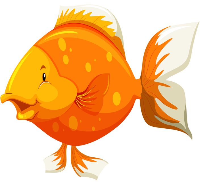 736x657 430 Best Clipart Fish And Sea Images On Pisces, Tube