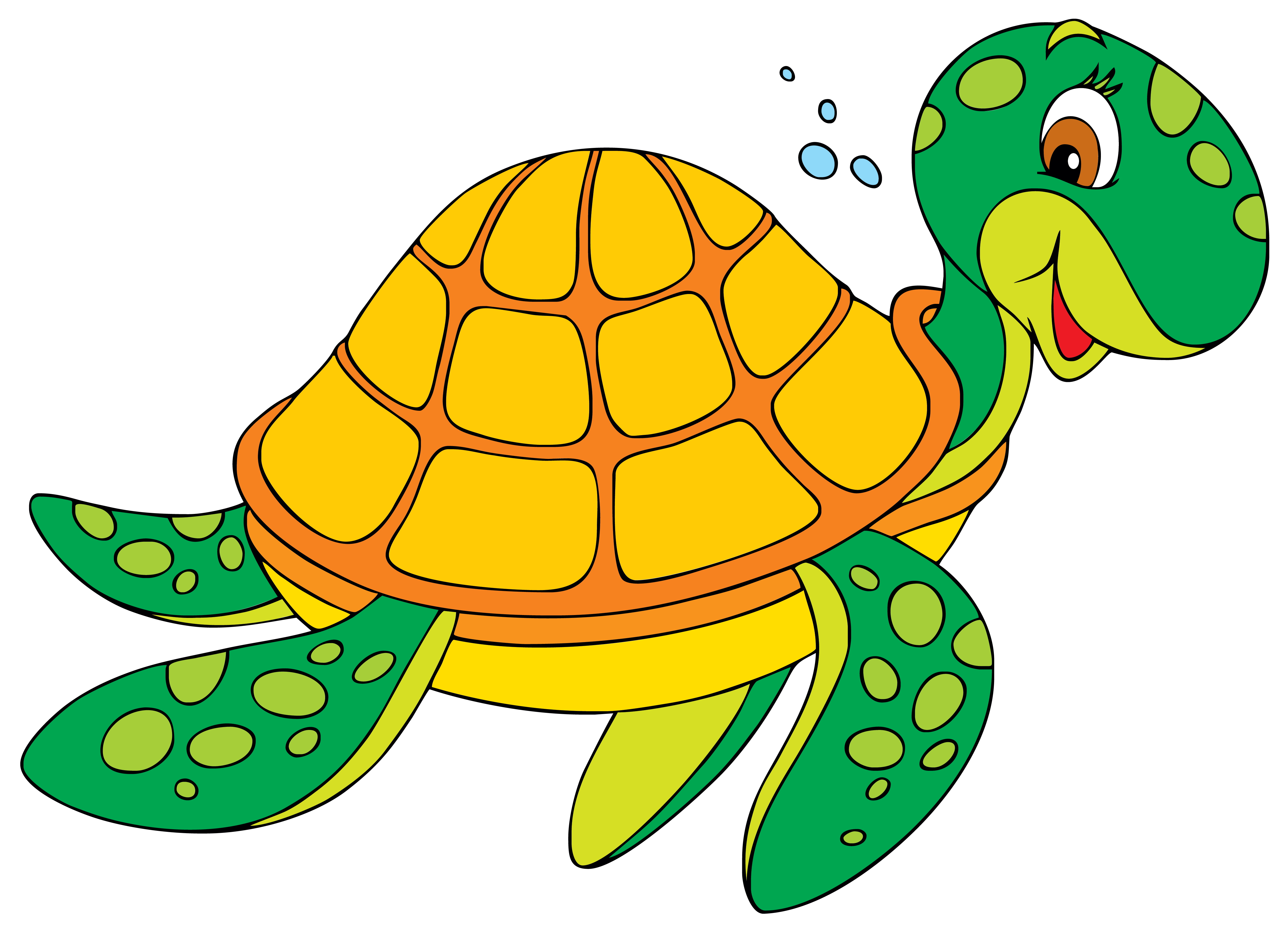 4956x3593 Turtleswiming Clipart Amp Turtleswiming Clip Art Images