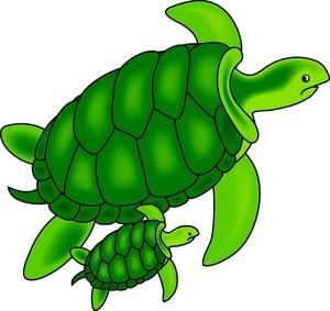 300x283 Sea Turtles Clipart Image