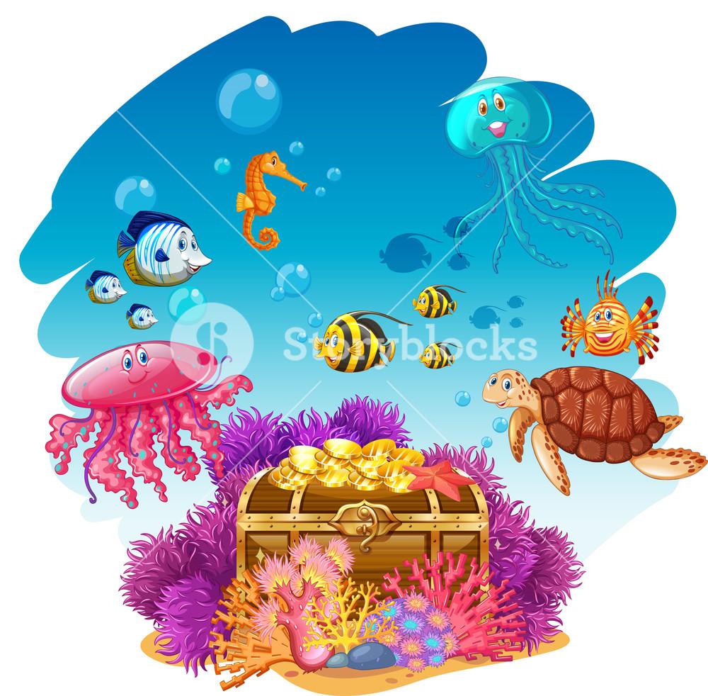 1000x982 Treassure Chest And Sea Animals Underwater Illustration Royalty
