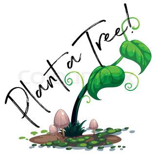 320x315 Plant, Plants, Clipart Stock Vector Colourbox