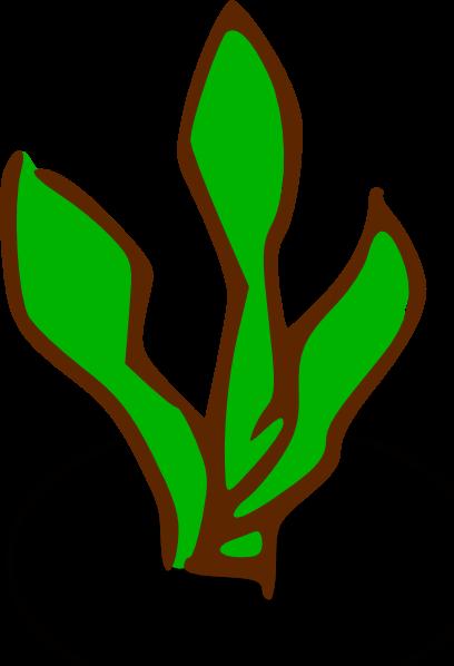 408x598 Sea Plants Cliparts